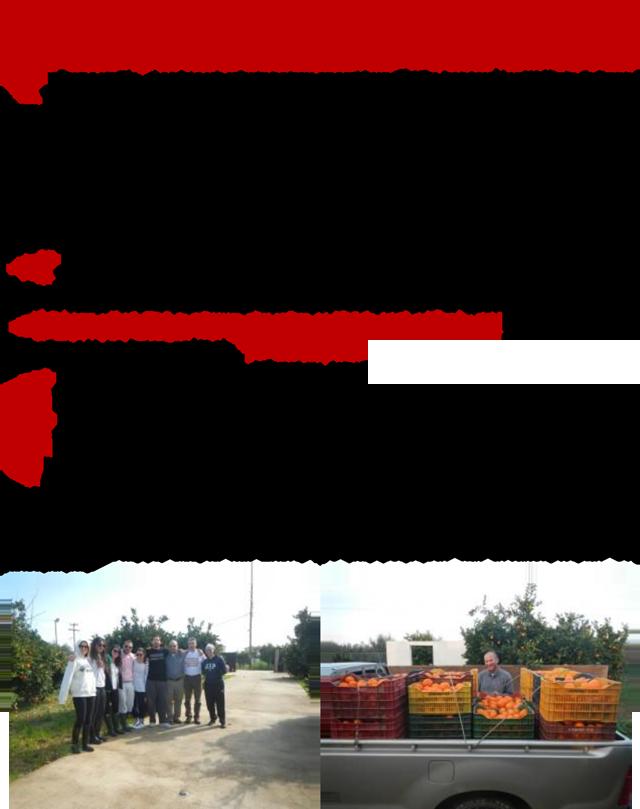 ΔΕΣΜΟΣ-2013-1