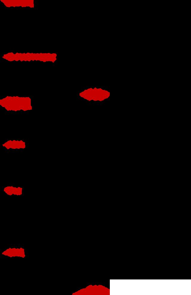 IdeologiaKapitalismoy-3