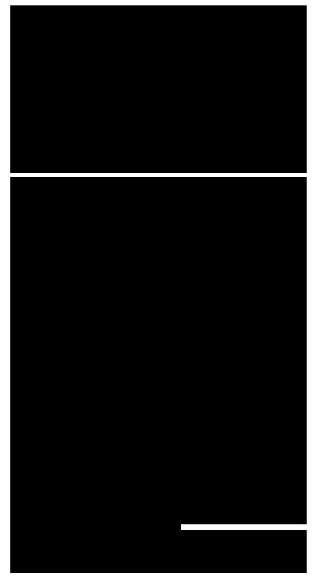 FRAGMEX-2