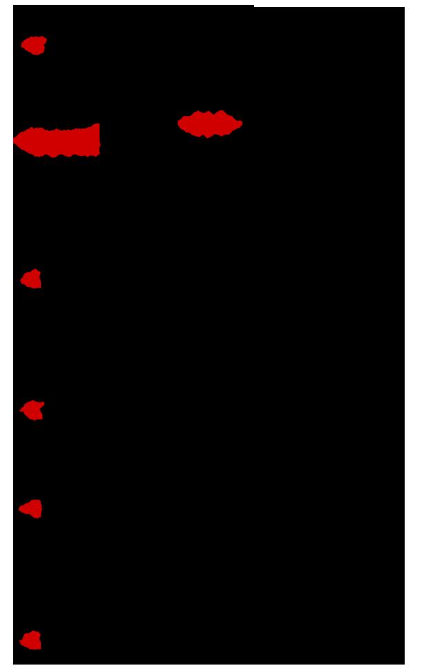 IstoriaAgapis-2