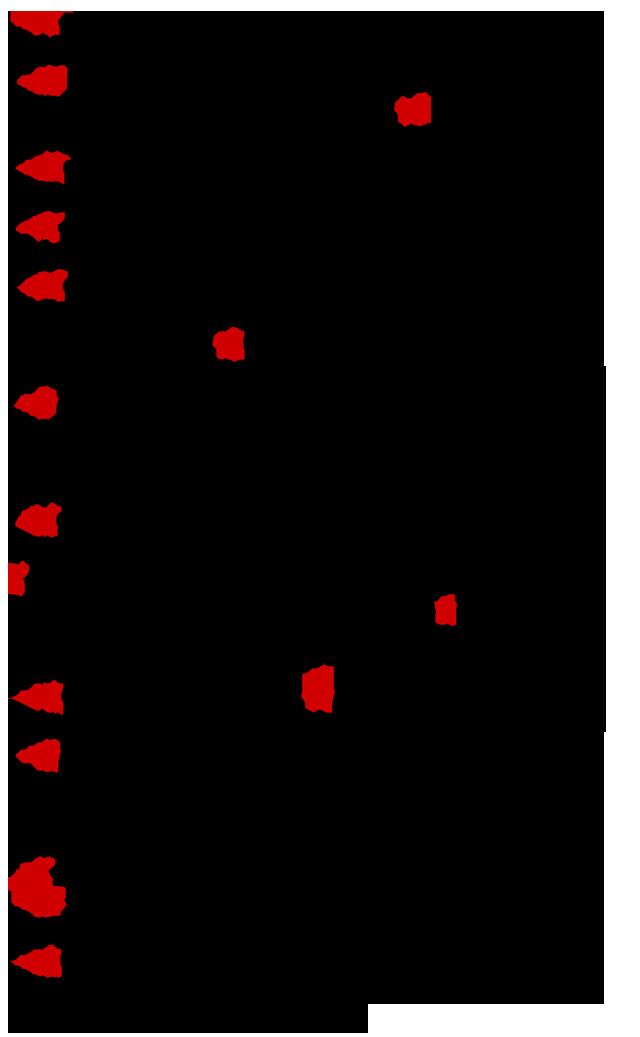 Myriam-2