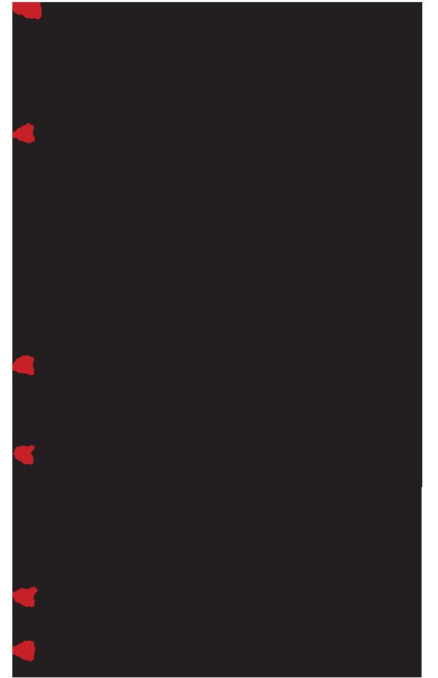 Aimodosia-15-16-2a
