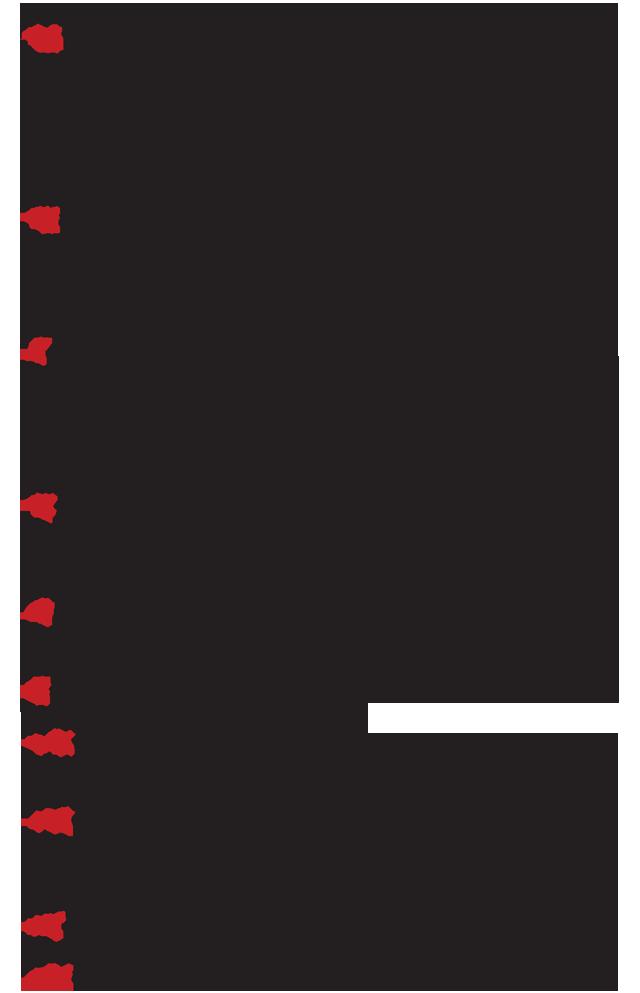 Aimodosia-15-16-3a