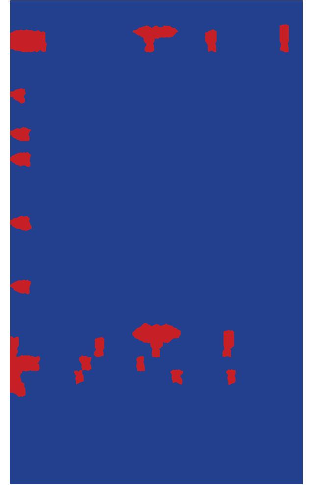 ProslaliaSynEygnomB11-16-2