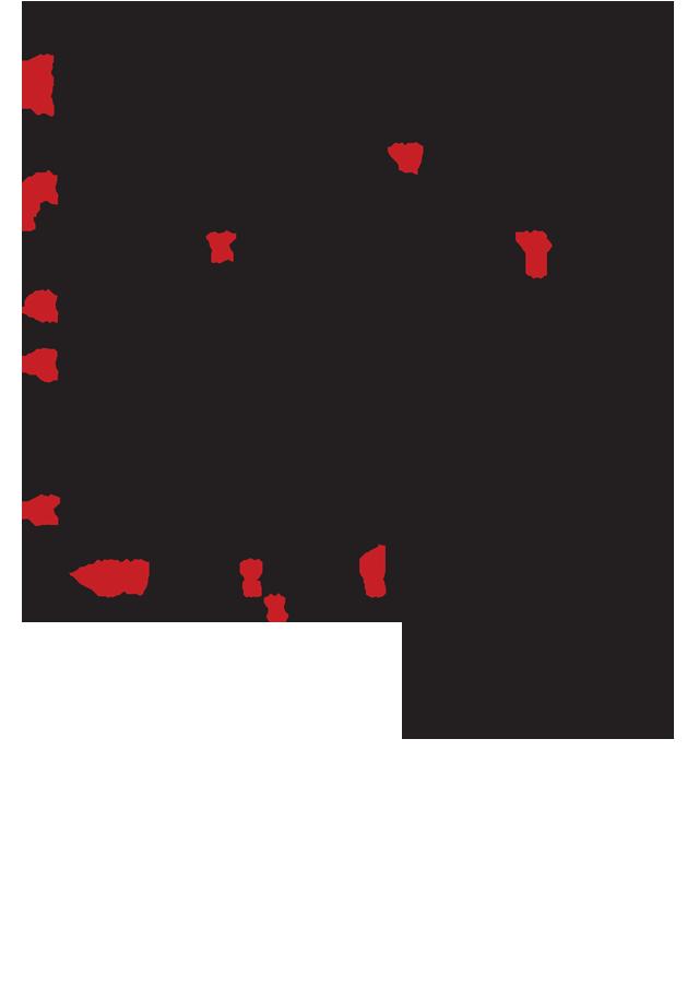 SynEygnomB11-16Orsa-3