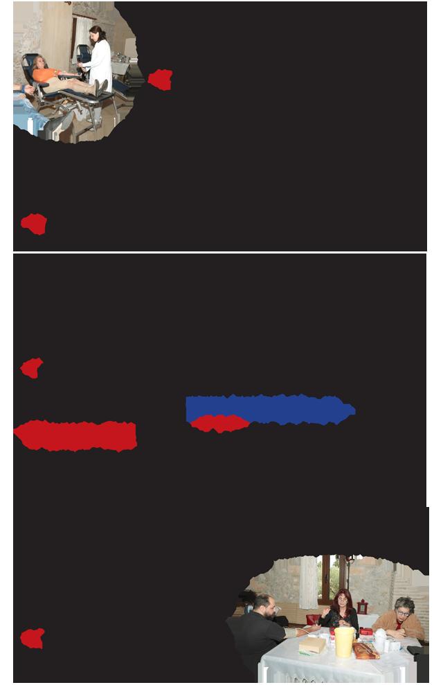 Aimodosia11-17-2