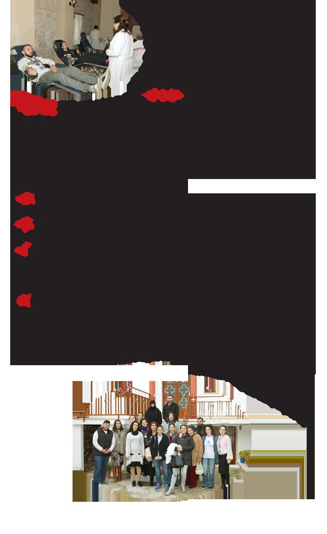 Aimodosia11-17-3