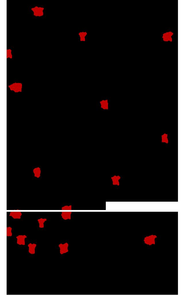 Nikitis-fthoras-Kontoglou-με-τιτλους-3