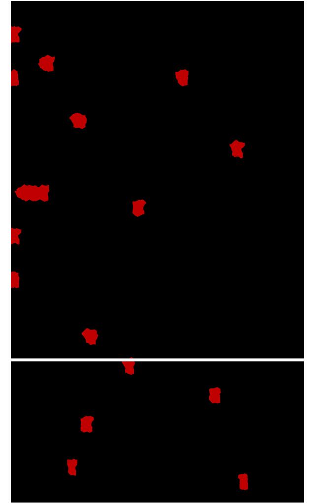 Nikitis-fthoras-Kontoglou-με-τιτλους-5
