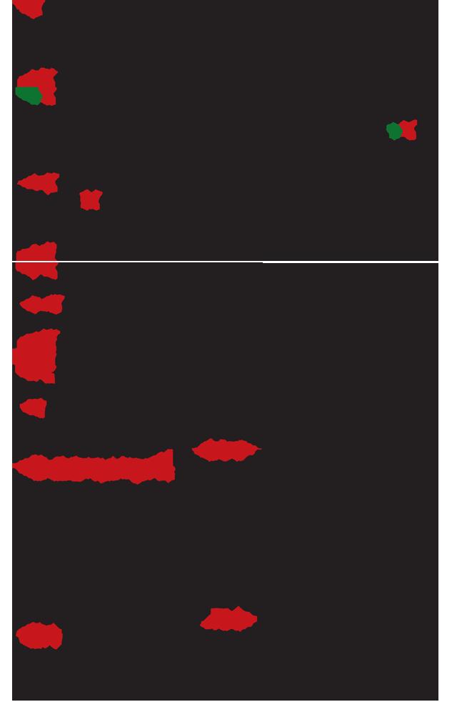 GenikiOrganotiki2019-2
