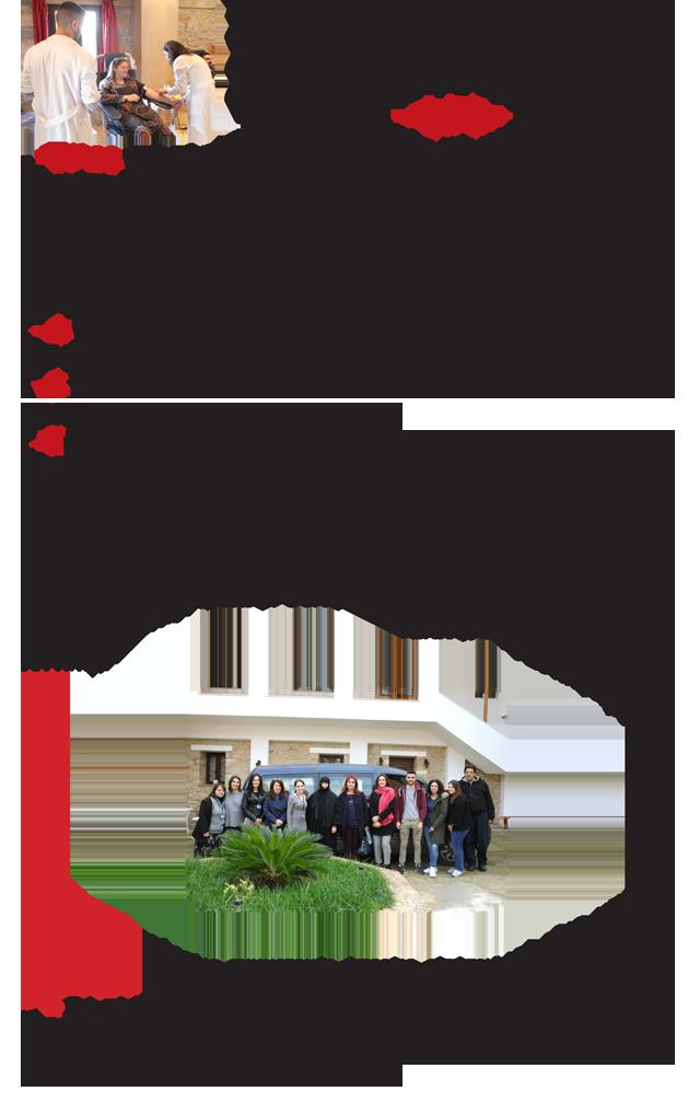 Aimodosia12-19-3