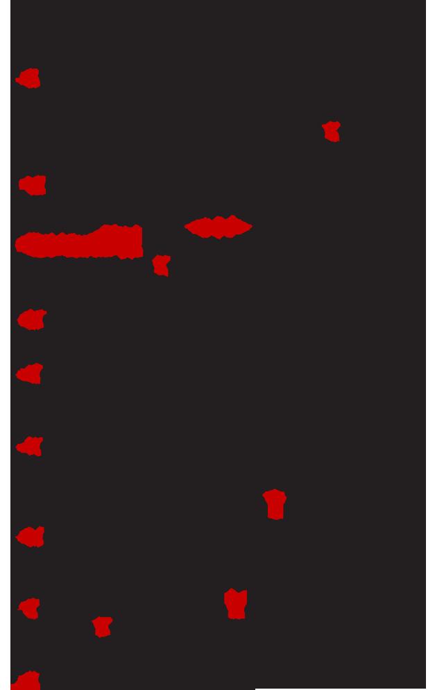 Panagia-Prousiotissa-6
